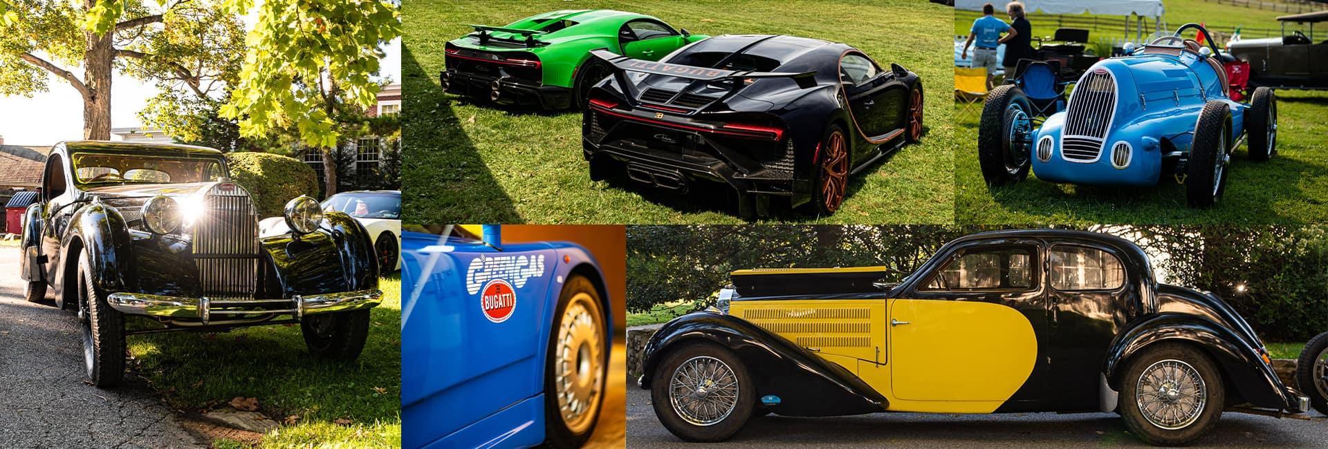 Bugatti Showcase